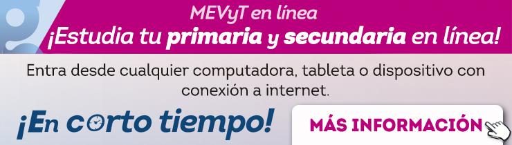 Mevyt en línea